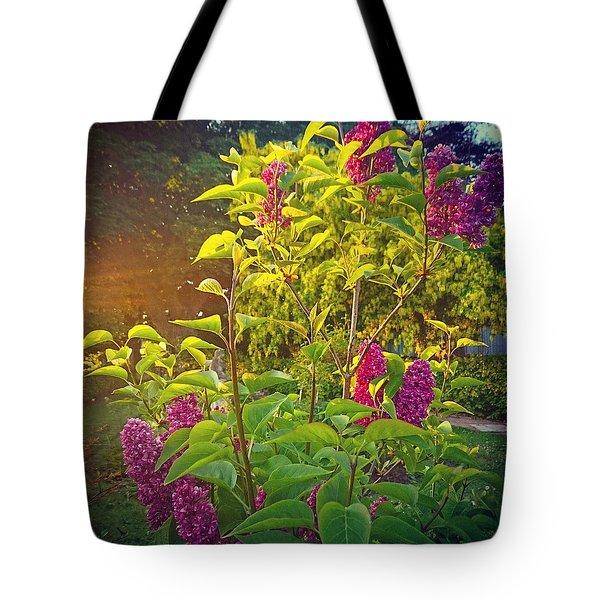 Lilac Tree Tote Bag