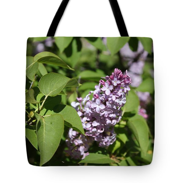 Tote Bag featuring the photograph Lilacs 5551 by Antonio Romero