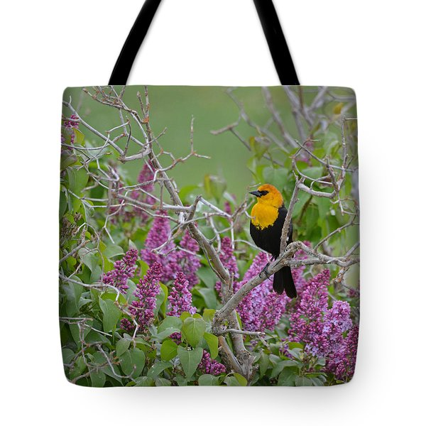 Lilacs And Yellowhead Blackbirds Tote Bag