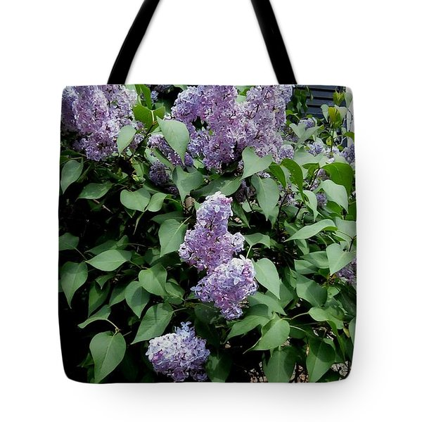 Lilacs By My Window Tote Bag