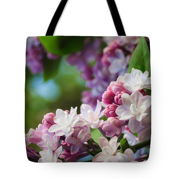 Lilacs Of Spring Tote Bag