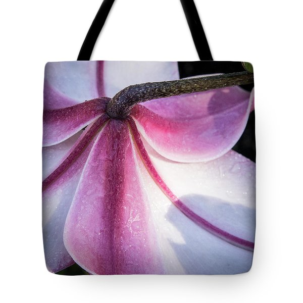 Tote Bag featuring the photograph Lilies Backside by Jean Noren