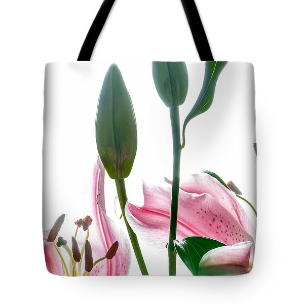 Tote Bag featuring the photograph Pink Oriental Starfire Lilies by David Perry Lawrence