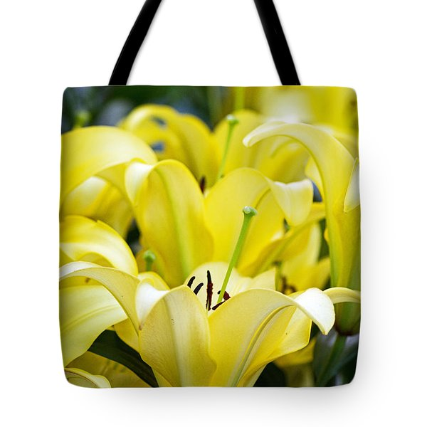 Lilies Of The Field #2 Tote Bag