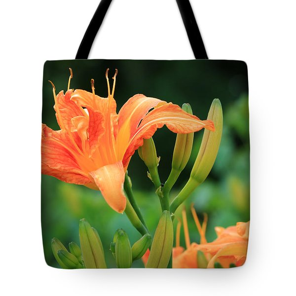 Lily Of The Evening Tote Bag