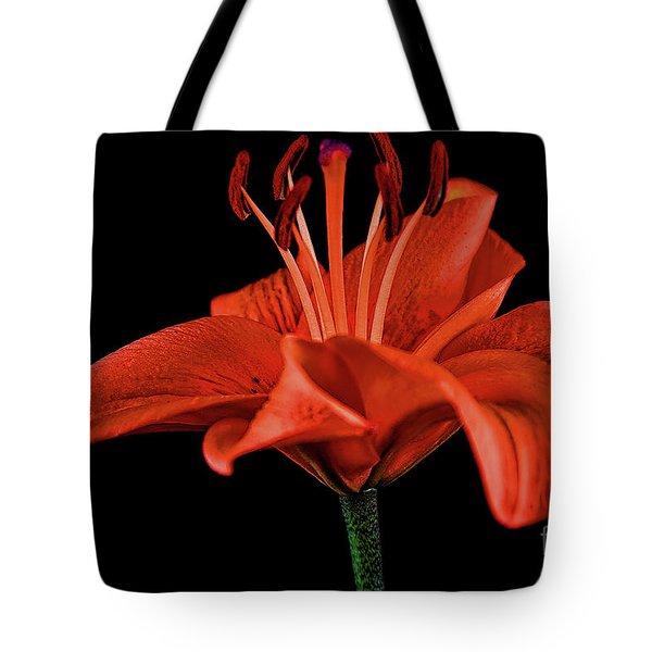 Lily 11018-1 Tote Bag