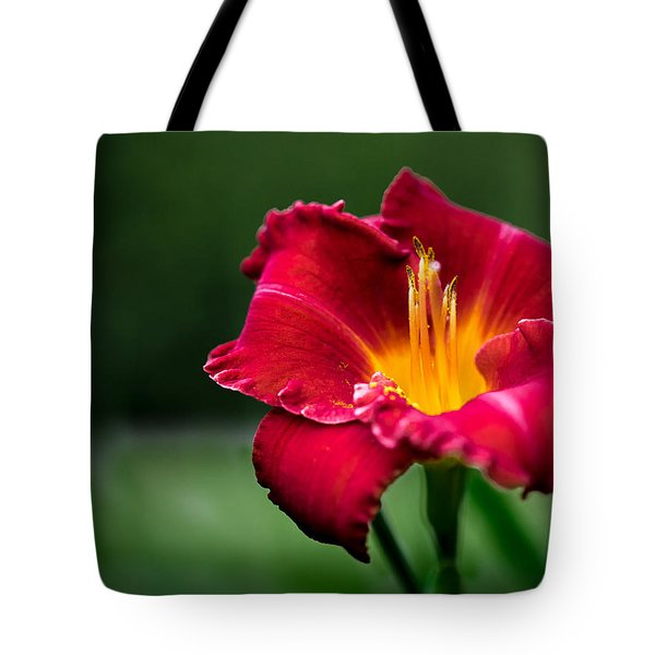 Lily Beauty Tote Bag