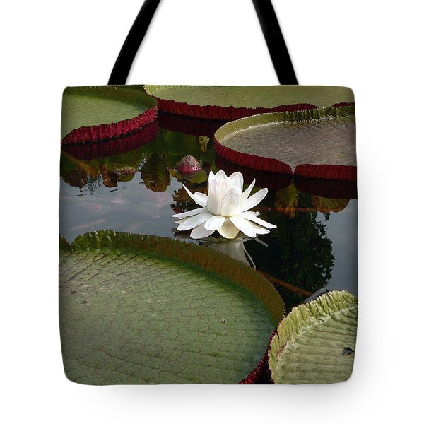 Lily Tote Bag by David Bearden