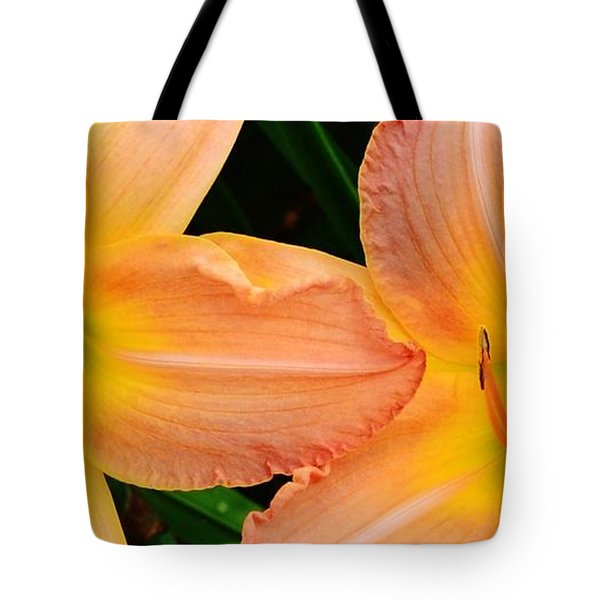 Lily Duo Tote Bag