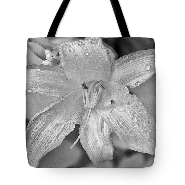 Lily In Infrared Tote Bag