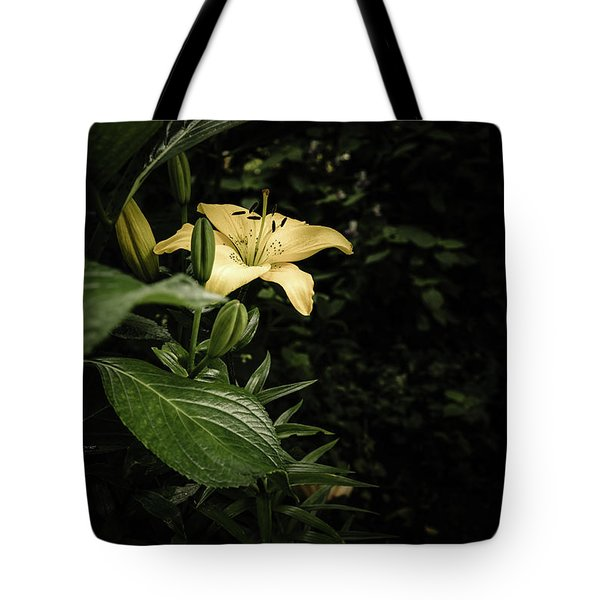 Tote Bag featuring the photograph Lily In The Garden Of Shadows by Marco Oliveira