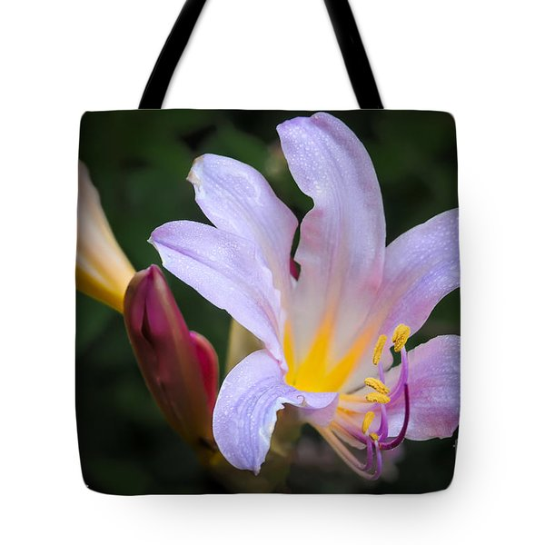 Tote Bag featuring the photograph Lily In The Rain By Flower Photographer David Perry Lawrence by David Perry Lawrence