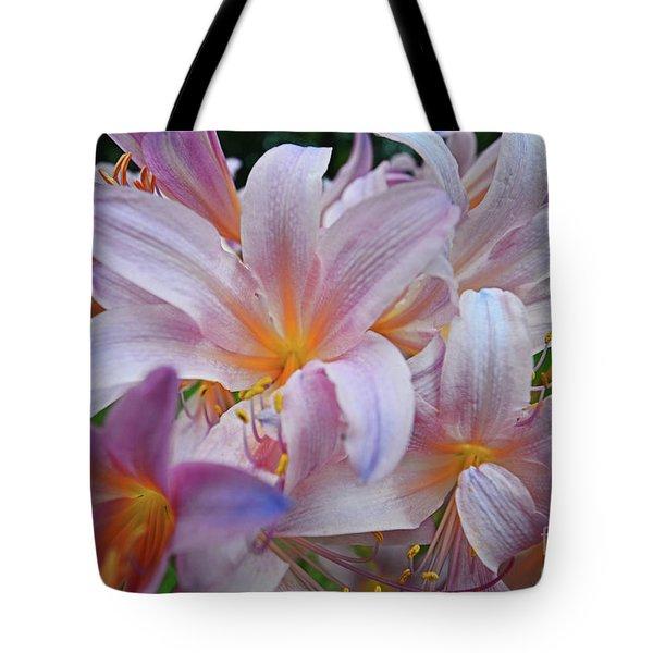 Lily Lavender Closeup Tote Bag
