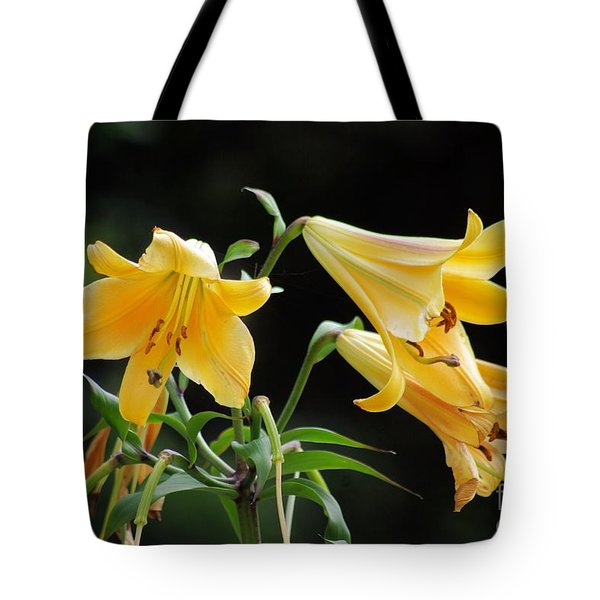 Lily Lily Where Art Thou Lily Tote Bag