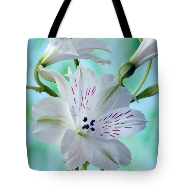 Lily Of The Incas Tote Bag by Terence Davis