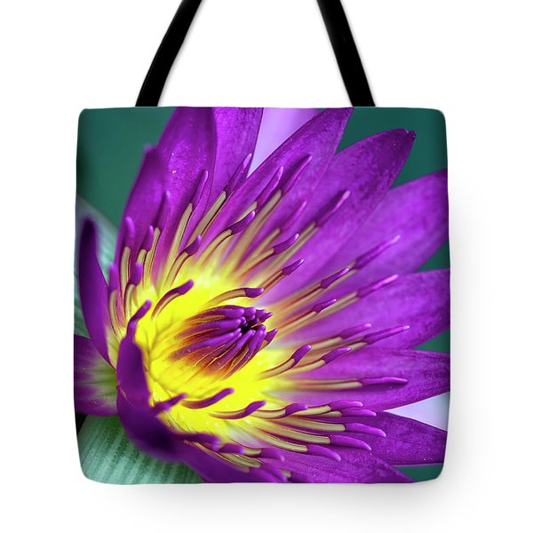 Lily On The Water Tote Bag