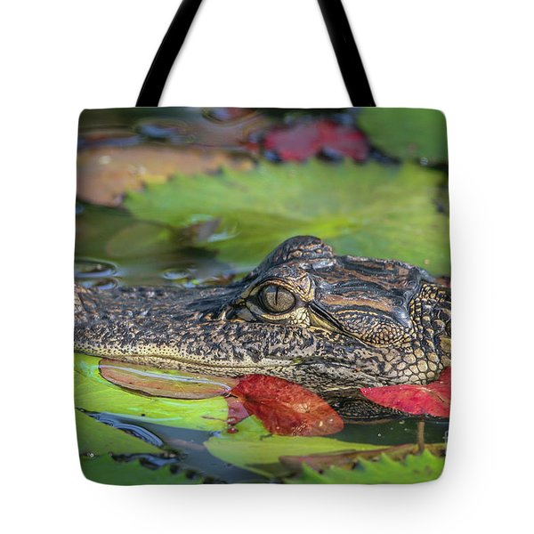 Tote Bag featuring the photograph Lily Pad Gator by Tom Claud