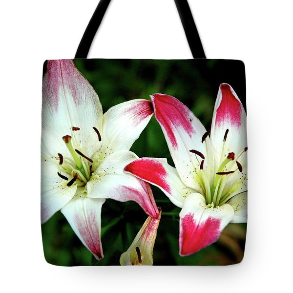Tote Bag featuring the photograph Lily Pink Reflections by LeeAnn McLaneGoetz McLaneGoetzStudioLLCcom