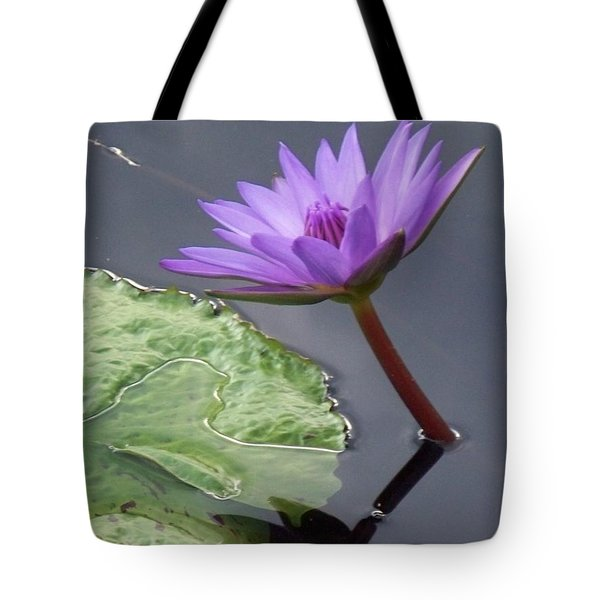 Lily Pond Tote Bag by Eric  Schiabor