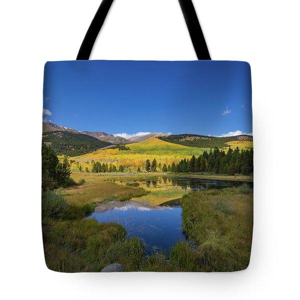 Lily Pond Lane Tote Bag