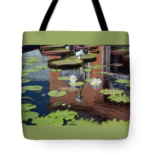 Lily Pond Reflections Tote Bag by Suzanne Gaff