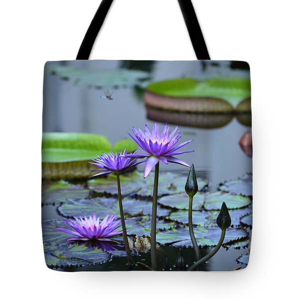 Lily Pond Wonders Tote Bag