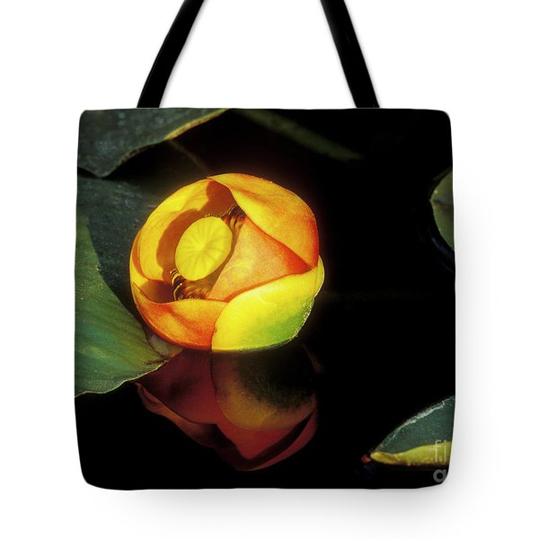 Tote Bag featuring the photograph Lily Reflection by Sandra Bronstein