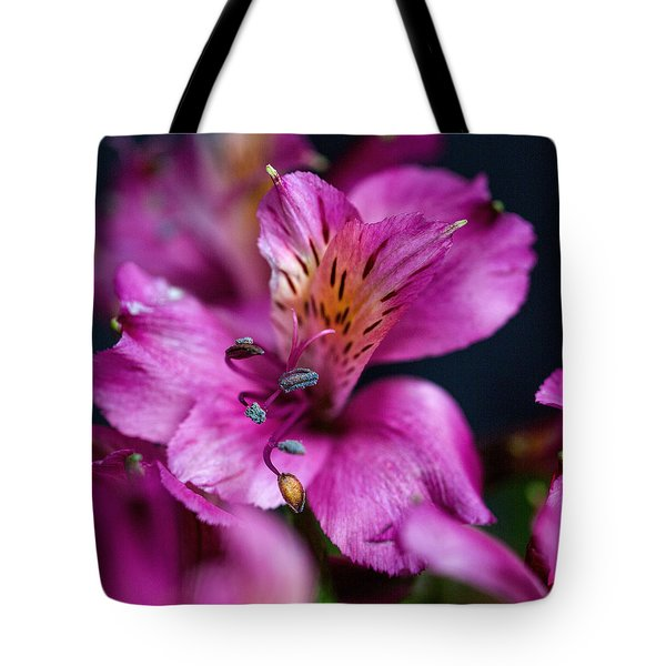 Lily Tote Bag by Susi Stroud