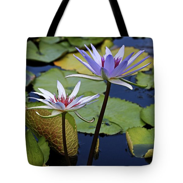 Tote Bag featuring the photograph Lily Trio by Judy Vincent