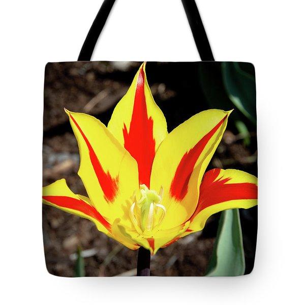 Lily Tulip Tote Bag