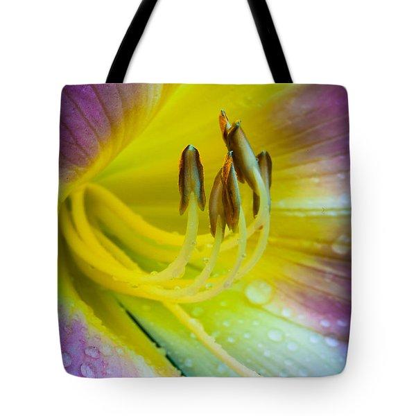 Lily Universe Tote Bag