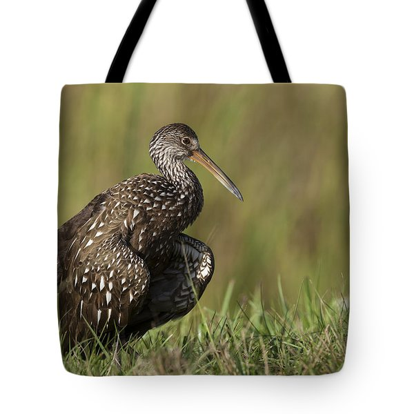 Limpkin Stretching In The Grass Tote Bag