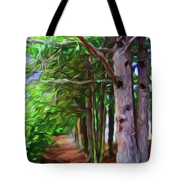 Lincoln's Path Tote Bag