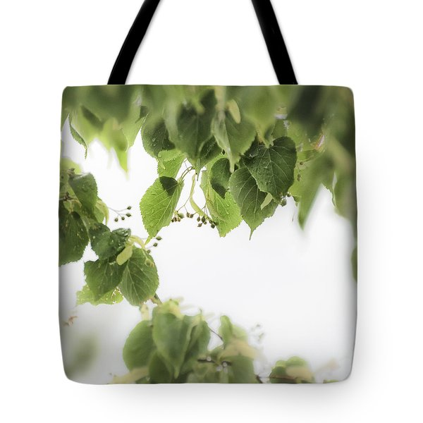 Linden In The Rain 2 -  Tote Bag