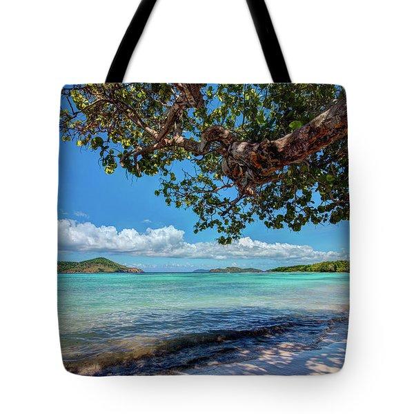 Lindquist Beach Tote Bag