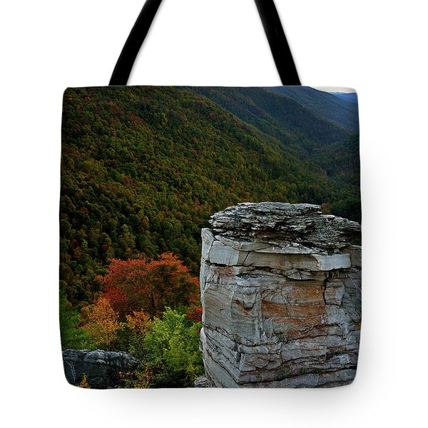 Lindy Point Tote Bag