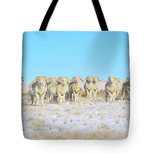 Line Em Up Rams Tote Bag