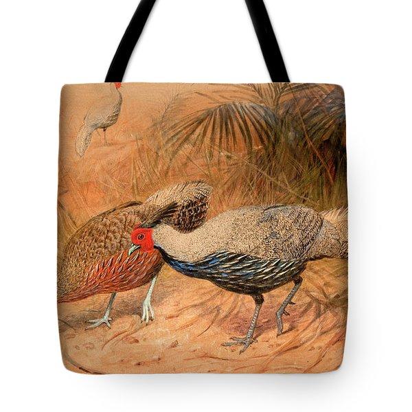 Lineated Kaleege Tote Bag