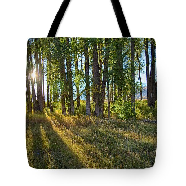 Tote Bag featuring the photograph Lines by Mary Hone