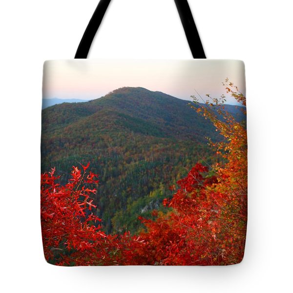 Tote Bag featuring the photograph Linville Gorge by Kathryn Meyer