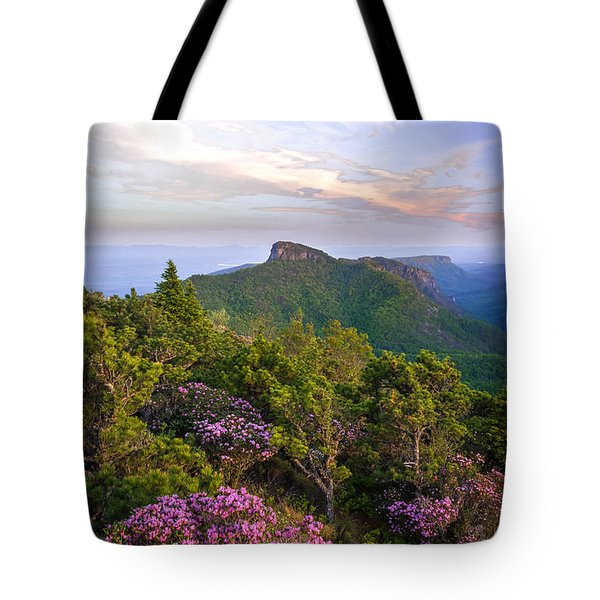 Tote Bag featuring the photograph Linville Gorge Spring Bloom by Serge Skiba