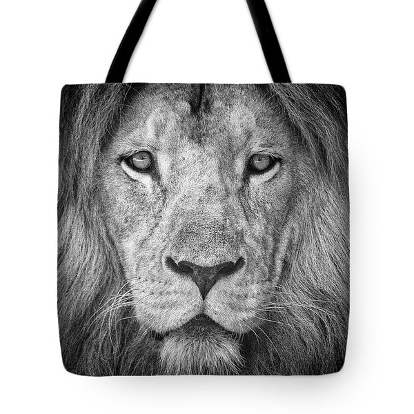 Tote Bag featuring the photograph Lion 5716 by Traven Milovich