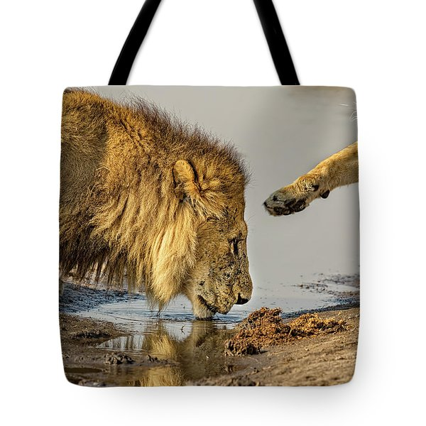 Lion Affection Tote Bag