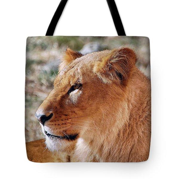 Lion Around Tote Bag