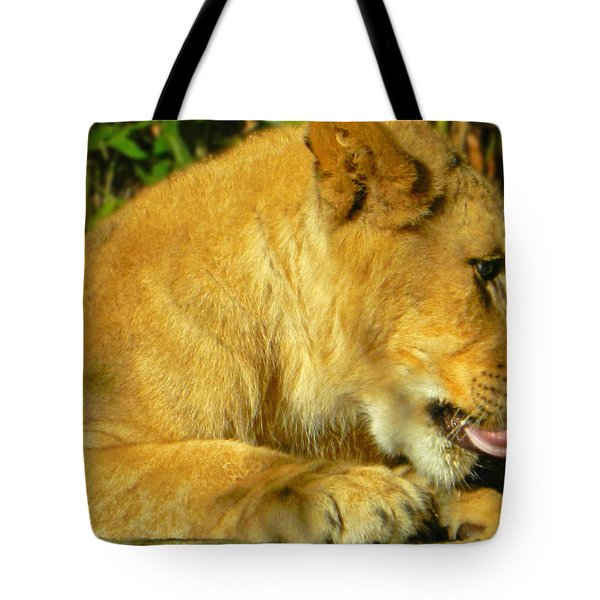 Lion Cub - What A Yummy Snack Tote Bag by Emmy Marie Vickers