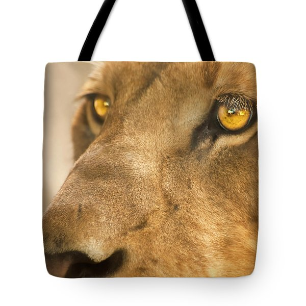 Lion Face Tote Bag by Carolyn Marshall