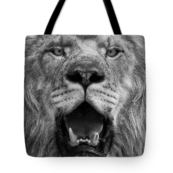 Tote Bag featuring the photograph Lion Face by Ken Barrett