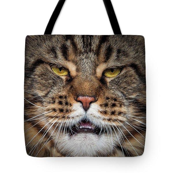 Lion Face. Tote Bag