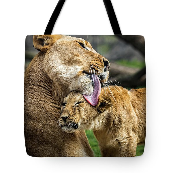Lion Mother Licking Her Cub Tote Bag