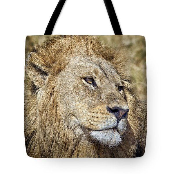 Lion Portrait Tote Bag